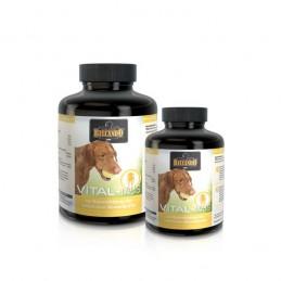 VITAL-Tabs 140g 60 Comprimidos Belcando