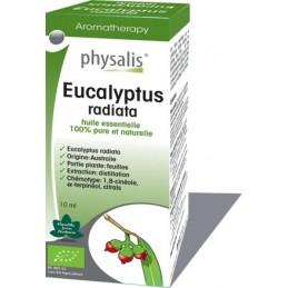 Oleo Essencial Eucalipto Radiata Physalis