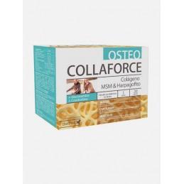 Osteo Collaforce 20 saquetas