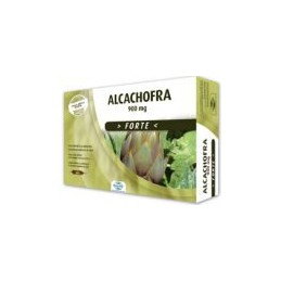 Alcachfra Forte