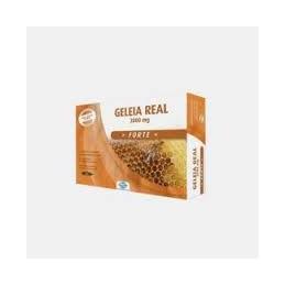 Geleia Real Forte 2000 mg 20 ampolas