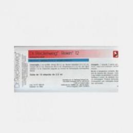 Rekin 12 10 ampolas (arteriosclerose, diminuição da memória, vertigens, claudicação intermitente, hipertensão arterial)
