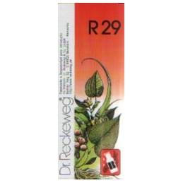 Dr Reckeweg R29 Gotas Vertigens, Cansaço Intelectual, Jet-Lag, Enjoos