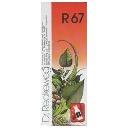 Dr Reckeweg R67 Gotas Colapso, Desespero, Insuficiência Cardio-Respiratória