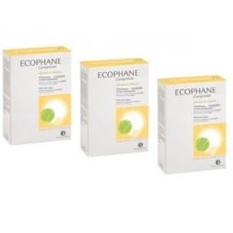 Ecophane Biorga Promo Comp X 60 2 +1 comps