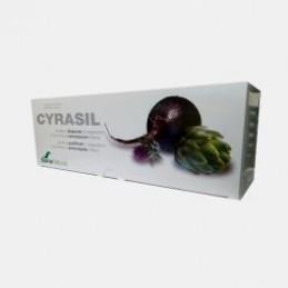 Cyrasil 14 ampolas de 10ml
