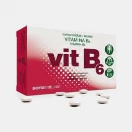 Vit B6 1,4mg 48 comprimidos
