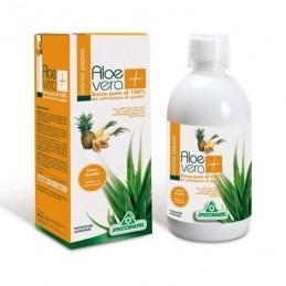 Aloe Vera + Ananás + Papaia 1000 ml