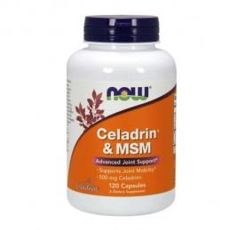 Celadrin & MSM 120 cápsulas
