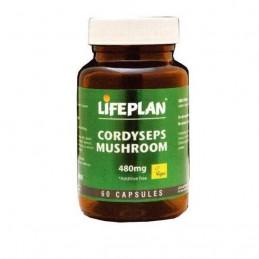 Cordyseps Mushroom 480mg 60 cápsulas